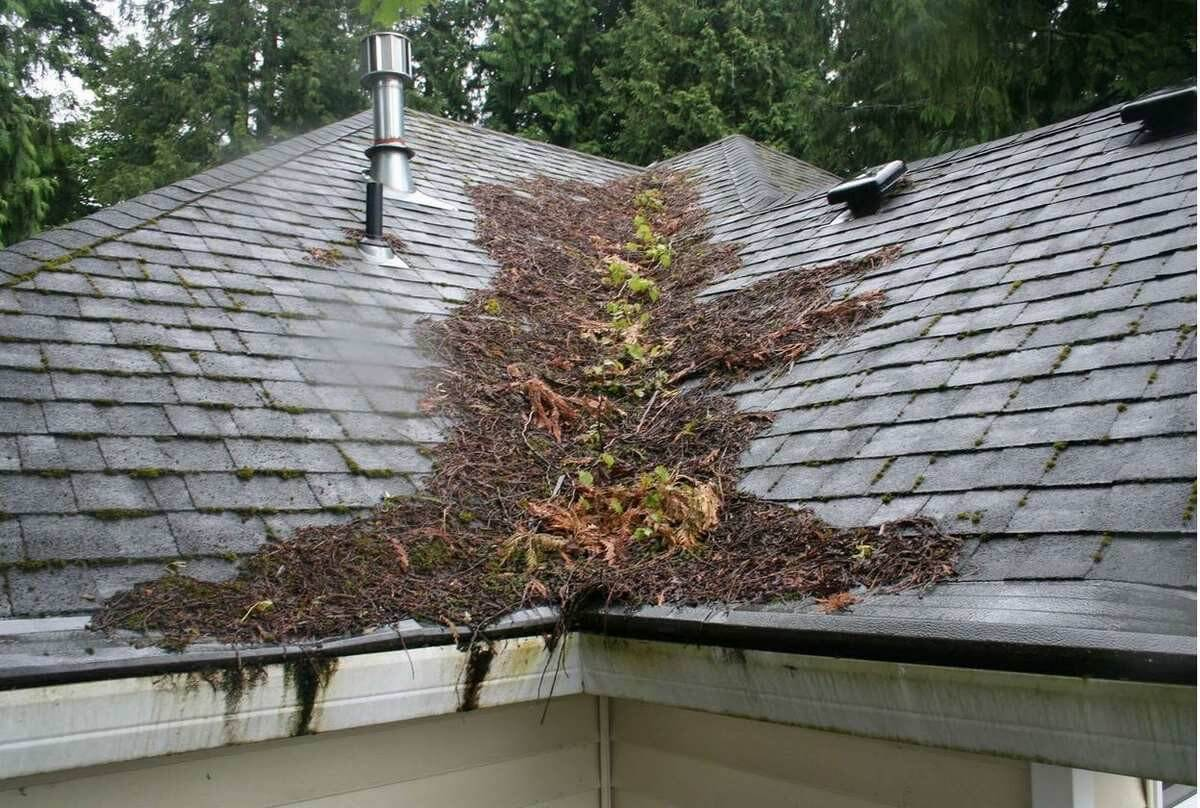 Image Result For Metal Roofs Vs Shingles