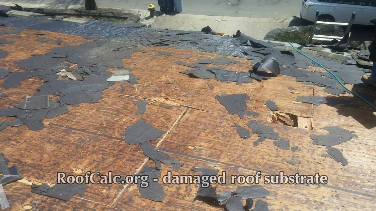 Importance Of Tearing Off Old Roof Shingles And Repairing