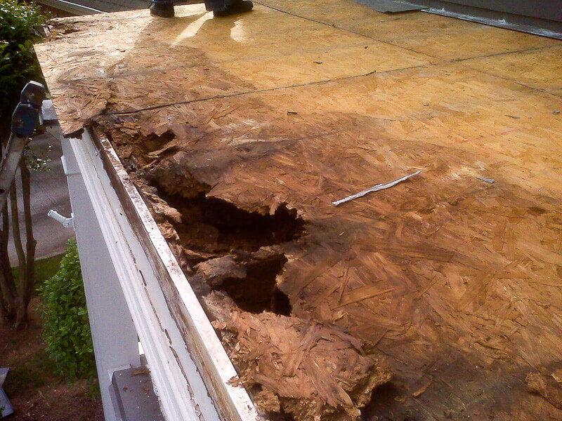 Flat Roof Rotting Sheathing Roofcalc Org